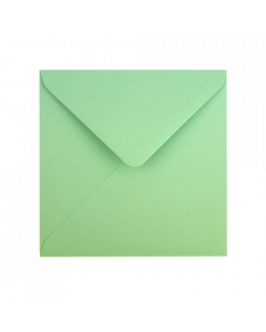 EV10 Recycled Envelope Mint