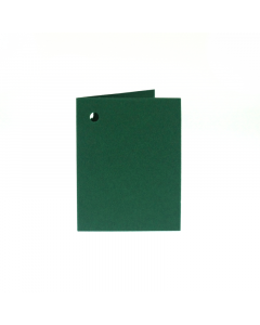 Folded Gift Tags 10Pk-HollyGreen